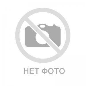 Яйцо БИО куриное столовое (бумаж. контейнер), 6 шт, Био-Хутор